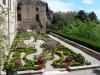 beziers-cathedral-garden