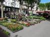 Bezier Flower Market 2